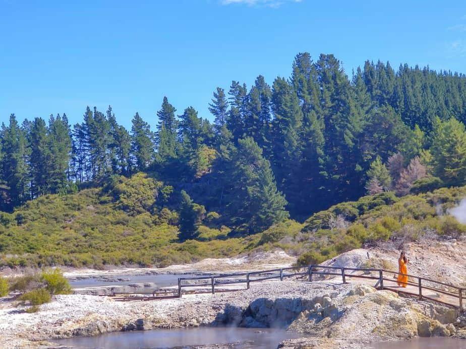 Hell's Gate Rotorua New Zealand